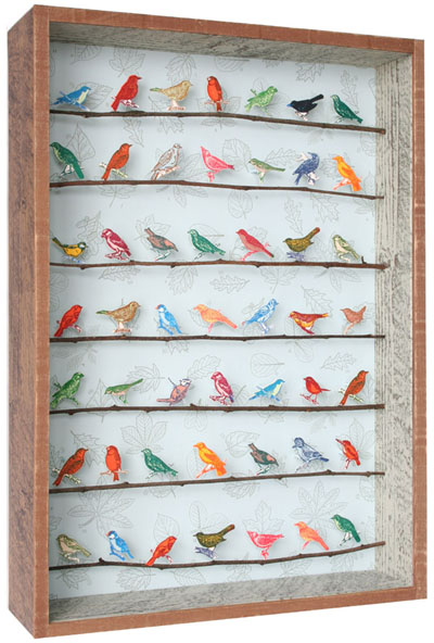 littlebirdsweb