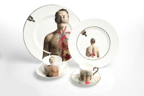 anatomica 3